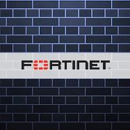Hacker leaks usernames and passwords for nearly 50K vulnerable Fortinet VPN devices
